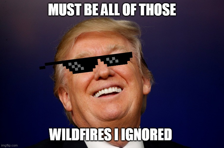 MUST BE ALL OF THOSE WILDFIRES I IGNORED | made w/ Imgflip meme maker