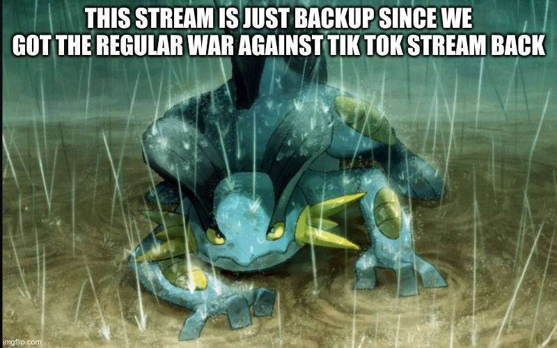 This stream is now just backup |  THIS STREAM IS JUST BACKUP SINCE WE GOT THE REGULAR WAR AGAINST TIK TOK STREAM BACK | image tagged in the best swampert 999 | made w/ Imgflip meme maker