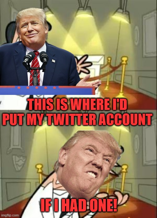 All gone. |  THIS IS WHERE I'D PUT MY TWITTER ACCOUNT; IF I HAD ONE! | image tagged in memes,this is where i'd put my trophy if i had one,president trump,twitter | made w/ Imgflip meme maker