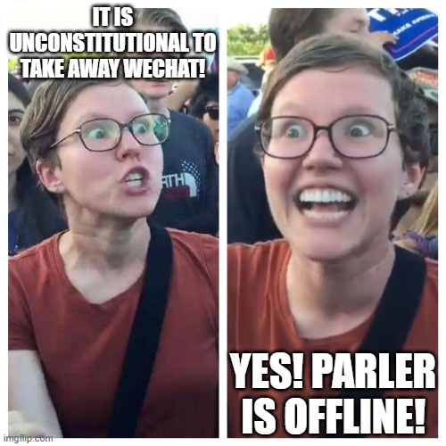 No qualms about trampling the rights of conservatives |  IT IS UNCONSTITUTIONAL TO TAKE AWAY WECHAT! YES! PARLER IS OFFLINE! | image tagged in hypocrite liberal,parler,wechat,left wing,biased media,amazon | made w/ Imgflip meme maker