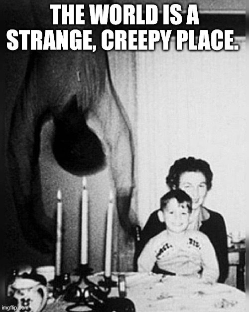 Strange |  THE WORLD IS A STRANGE, CREEPY PLACE. | image tagged in stranger things,strange,creepy,the world | made w/ Imgflip meme maker