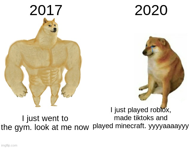 I don't |  2017; 2020; I just played roblox, made tiktoks and played minecraft. yyyyaaaayyy; I just went to the gym. look at me now | image tagged in memes,buff doge vs cheems | made w/ Imgflip meme maker