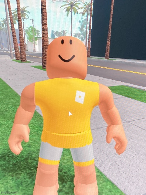 This is aydencenturyfox. He is looking at his beautiful creation. What did he build? | image tagged in roblox | made w/ Imgflip meme maker