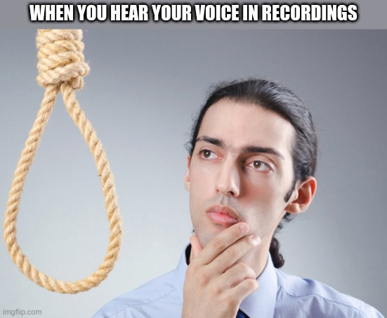 noose |  WHEN YOU HEAR YOUR VOICE IN RECORDINGS | image tagged in noose | made w/ Imgflip meme maker
