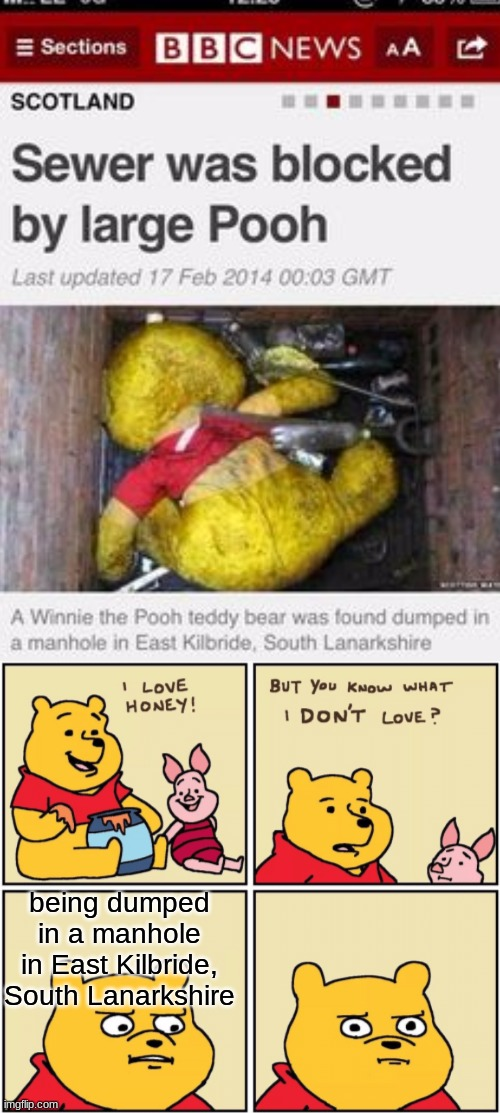 Say hello to the title |  being dumped in a manhole in East Kilbride, South Lanarkshire | image tagged in upset pooh,pooh,meme,funny | made w/ Imgflip meme maker