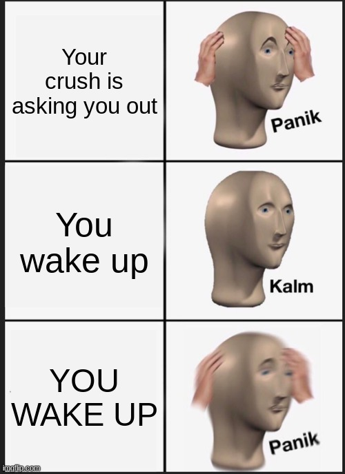 If dreams were reality, I'd be living in Heavan |  Your crush is asking you out; You wake up; YOU WAKE UP | image tagged in memes,panik kalm panik,oh well | made w/ Imgflip meme maker