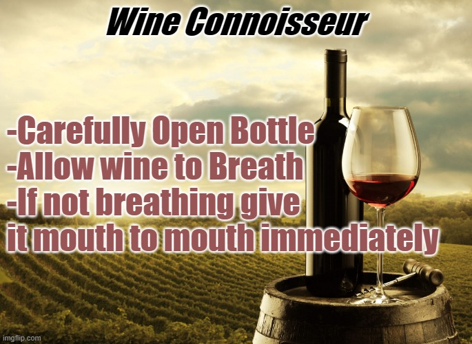 Wine |  Wine Connoisseur; -Carefully Open Bottle  -Allow wine to Breath -If not breathing give it mouth to mouth immediately | image tagged in wine | made w/ Imgflip meme maker
