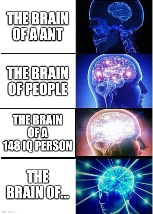 brain |  THE BRAIN OF A ANT; THE BRAIN OF PEOPLE; THE BRAIN OF A 148 IQ PERSON; THE BRAIN OF... | image tagged in memes,expanding brain | made w/ Imgflip meme maker