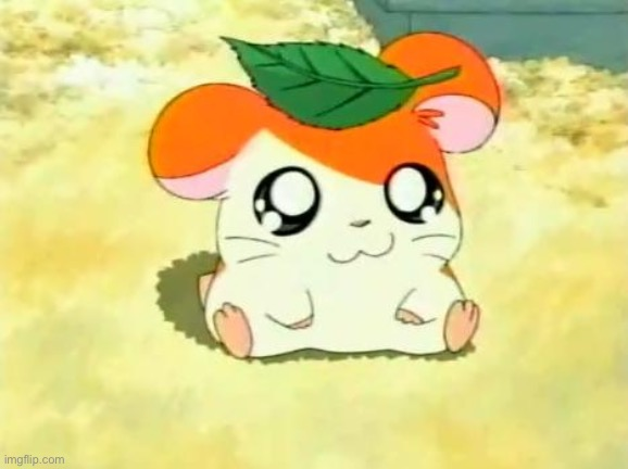 Hamtaro | image tagged in memes,hamtaro | made w/ Imgflip meme maker