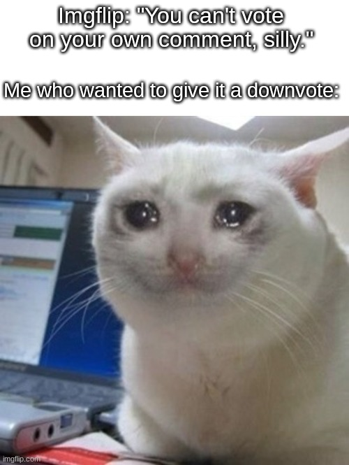 "Imgflip: ""You can't vote on your own comment, silly.""; Me who wanted to give it a downvote: 