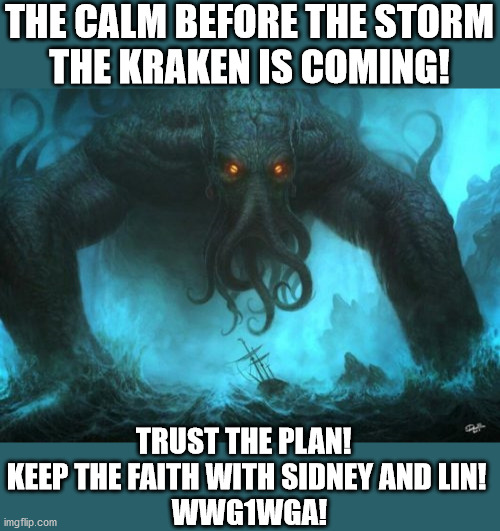 The Kraken is Coming! |  THE CALM BEFORE THE STORM THE KRAKEN IS COMING! TRUST THE PLAN!   KEEP THE FAITH WITH SIDNEY AND LIN!  WWG1WGA! | image tagged in qanon,sidney powell,lin wood,president trump,wwg1wga,release the kraken | made w/ Imgflip meme maker