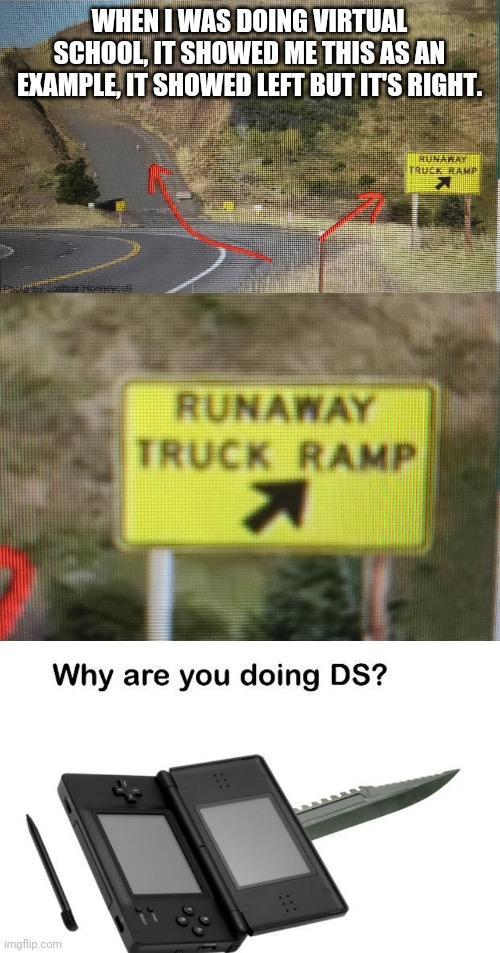 Wrong Way, You're drunk! |  WHEN I WAS DOING VIRTUAL SCHOOL, IT SHOWED ME THIS AS AN EXAMPLE, IT SHOWED LEFT BUT IT'S RIGHT. | image tagged in why are you doing ds,funny,you had one job,how the turntables,task failed successfully,memes | made w/ Imgflip meme maker