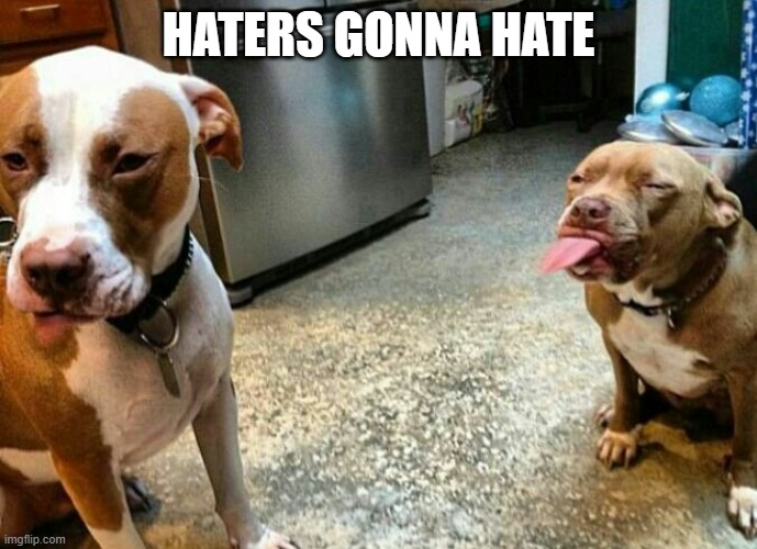 HATERS GONNA HATE | image tagged in haters gonna hate | made w/ Imgflip meme maker