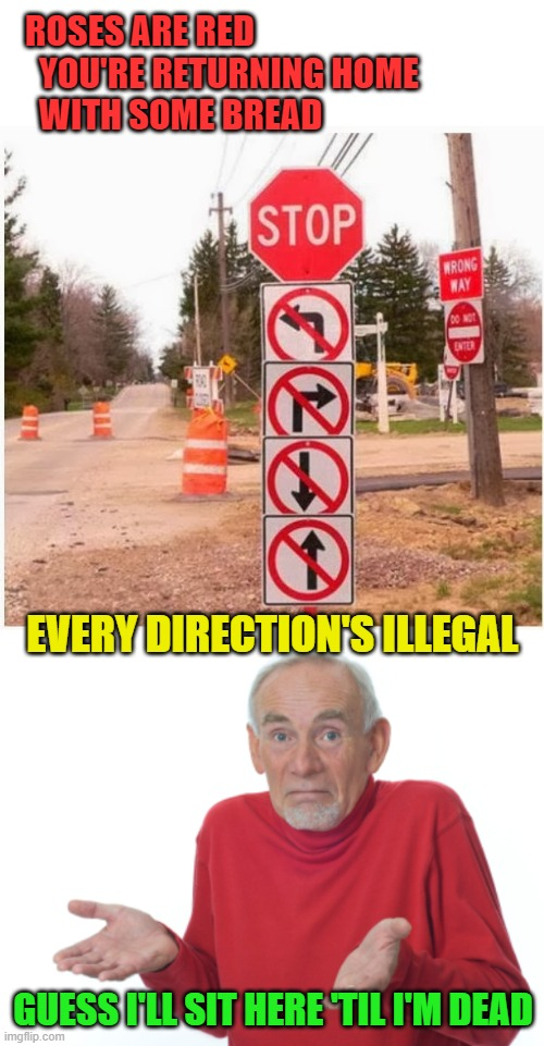 Guess I'm breaking the law... eventually |  ROSES ARE RED   YOU'RE RETURNING HOME   WITH SOME BREAD; EVERY DIRECTION'S ILLEGAL; GUESS I'LL SIT HERE 'TIL I'M DEAD | image tagged in guess i'll die,memes,wrong way,illegal,street signs | made w/ Imgflip meme maker