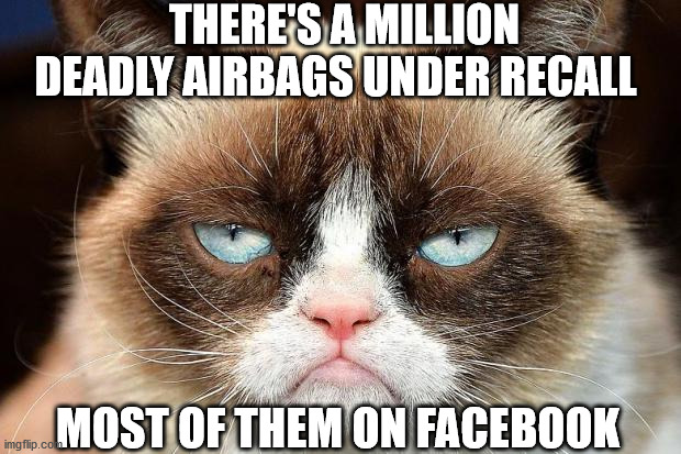Grumpy Cat Not Amused |  THERE'S A MILLION DEADLY AIRBAGS UNDER RECALL; MOST OF THEM ON FACEBOOK | image tagged in memes,grumpy cat not amused,grumpy cat | made w/ Imgflip meme maker