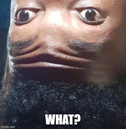 WHAT? | made w/ Imgflip meme maker