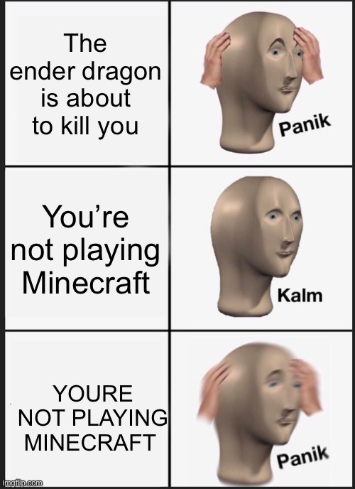 On no |  The ender dragon is about to kill you; You're not playing Minecraft; YOURE NOT PLAYING MINECRAFT | image tagged in memes,panik kalm panik,barney will eat all of your delectable biscuits | made w/ Imgflip meme maker