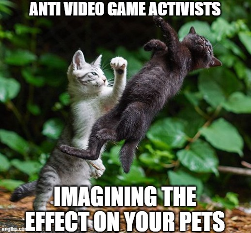 Try solving real problems instead |  ANTI VIDEO GAME ACTIVISTS; IMAGINING THE EFFECT ON YOUR PETS | image tagged in mortal kombat,videogames,warrior cats,waste of time | made w/ Imgflip meme maker