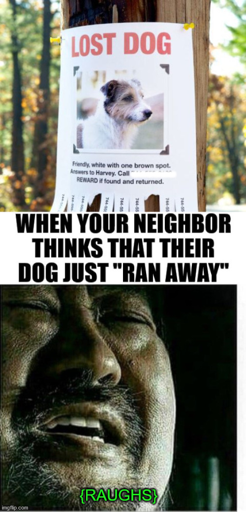 Kind of dark. |  ------; {RAUGHS} | image tagged in lost,pets,dogs,dark humor | made w/ Imgflip meme maker