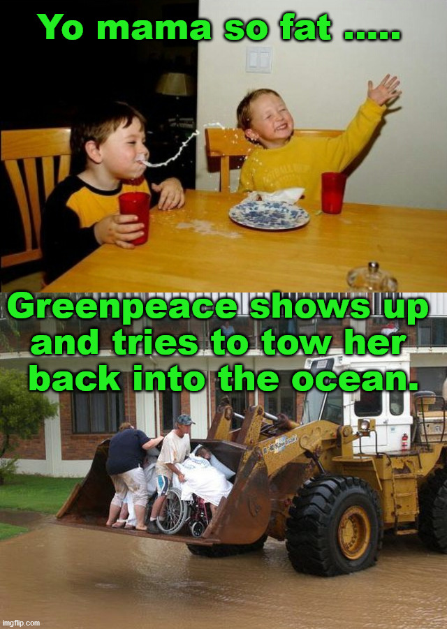 Whale of a good time. |  Yo mama so fat ..... Greenpeace shows up  and tries to tow her  back into the ocean. | image tagged in memes,yo mamas so fat | made w/ Imgflip meme maker