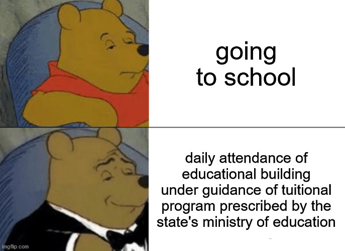 Tuxedo Winnie The Pooh |  going to school; daily attendance of educational building under guidance of tuitional program prescribed by the state's ministry of education | image tagged in memes,tuxedo winnie the pooh | made w/ Imgflip meme maker