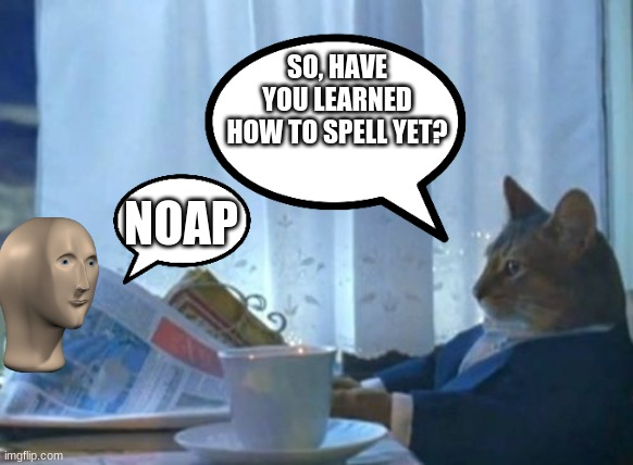 stil dont no howe two spelll |  SO, HAVE YOU LEARNED HOW TO SPELL YET? NOAP | image tagged in memes,i should buy a boat cat | made w/ Imgflip meme maker
