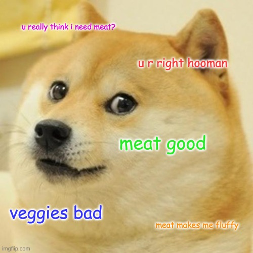 Doge Meme | u really think i need meat? u r right hooman meat good veggies bad meat makes me fluffy | image tagged in memes,doge | made w/ Imgflip meme maker