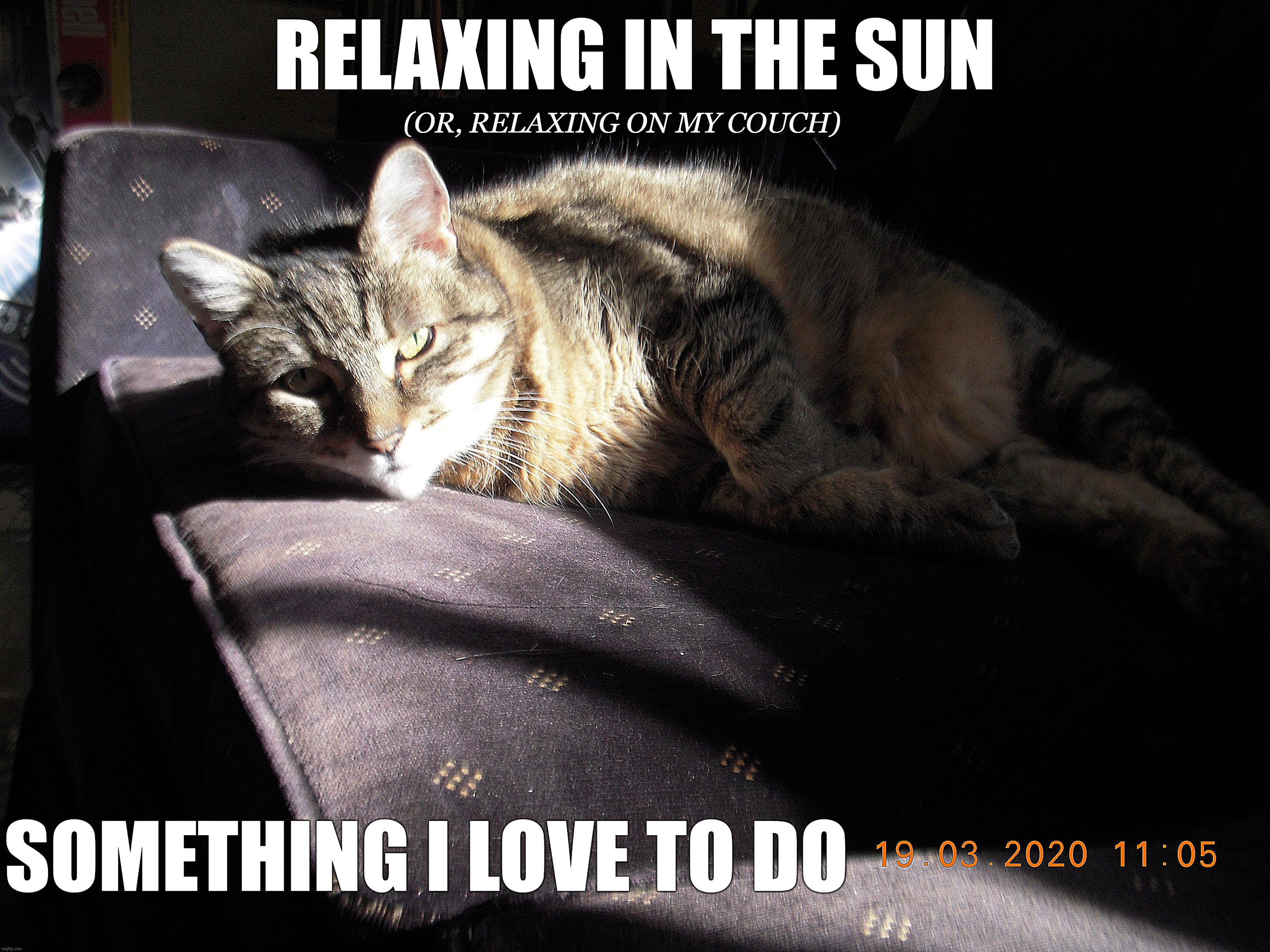 """Relaxing on the couch"" 