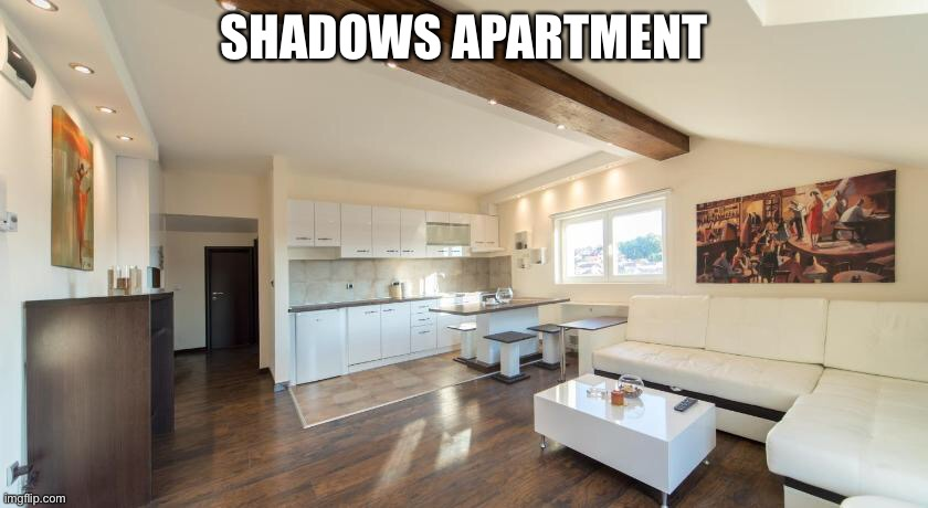 SHADOWS APARTMENT | made w/ Imgflip meme maker