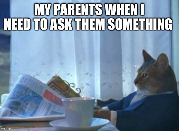 I Should Buy A Boat Cat |  MY PARENTS WHEN I NEED TO ASK THEM SOMETHING | image tagged in memes | made w/ Imgflip meme maker