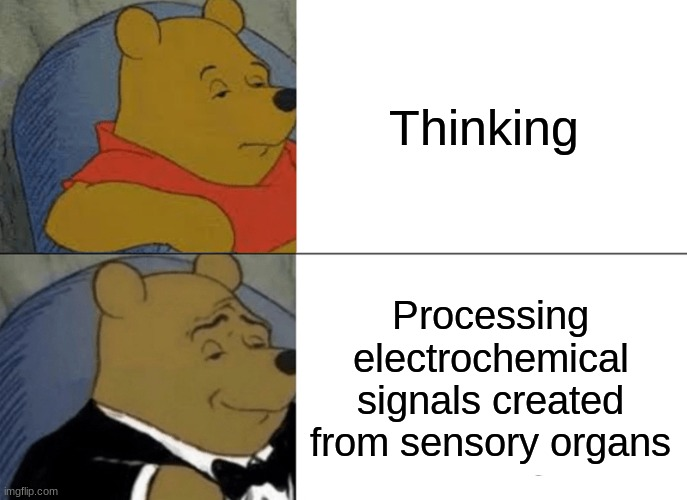 Tuxedo Winnie The Pooh |  Thinking; Processing electrochemical signals created from sensory organs | image tagged in memes,tuxedo winnie the pooh | made w/ Imgflip meme maker