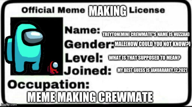 my meme making license |  MAKING; TREYTON(MINI CREWMATE''S NAME IS HUZZAH); MALE(HOW COULD YOU NOT KNOW?); WHAT IS THAT SUPPOSED TO MEAN? MY BEST GUESS IS JANUARAREY,12,2021; MEME MAKING CREWMATE | made w/ Imgflip meme maker