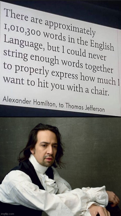 Nice. (I will be using this in my arguments) | image tagged in hamilton write like you're running out of time,insults,hit you with a chair | made w/ Imgflip meme maker