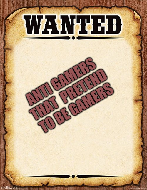 no srsly what is up with that? |  ANTI GAMERS THAT  PRETEND TO BE GAMERS | image tagged in wanted poster,bruh | made w/ Imgflip meme maker