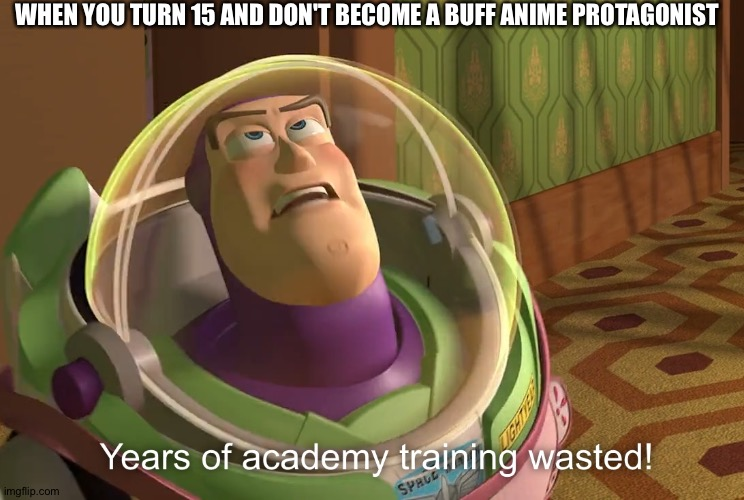 years of academy training wasted |  WHEN YOU TURN 15 AND DON'T BECOME A BUFF ANIME PROTAGONIST | image tagged in years of academy training wasted,anime,anime meme,animeme | made w/ Imgflip meme maker