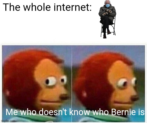 Bernie |  The whole internet:; Me who doesn't know who Bernie is | image tagged in memes,monkey puppet | made w/ Imgflip meme maker