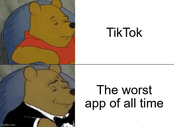 hehe ban tiktok |  TikTok; The worst app of all time | image tagged in memes,tuxedo winnie the pooh,heyo lets ban tiktok,funny,ish,darkcatkittn | made w/ Imgflip meme maker