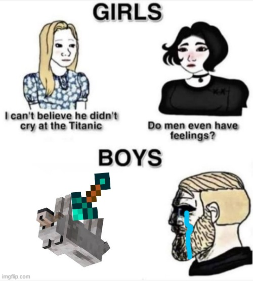 WHYYYYYYYYYYYYYYYYYYYYYYYYYYYY | image tagged in do men even have feelings,minecraft dog | made w/ Imgflip meme maker