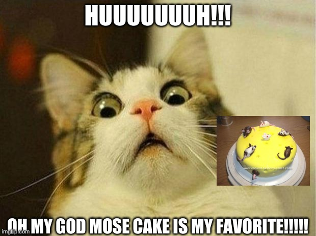 fhfhfkh |  HUUUUUUUH!!! OH MY GOD MOSE CAKE IS MY FAVORITE!!!!! | image tagged in memes,scared cat | made w/ Imgflip meme maker