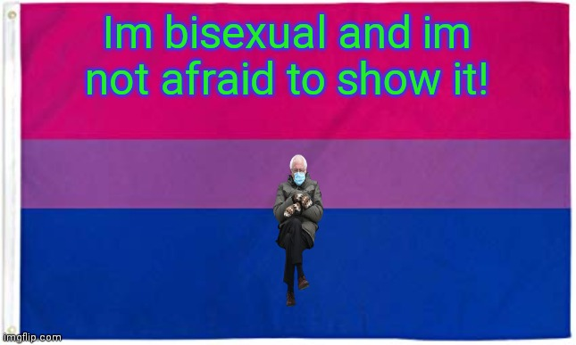 PRIDE |  Im bisexual and im not afraid to show it! | image tagged in bisexual flag | made w/ Imgflip meme maker
