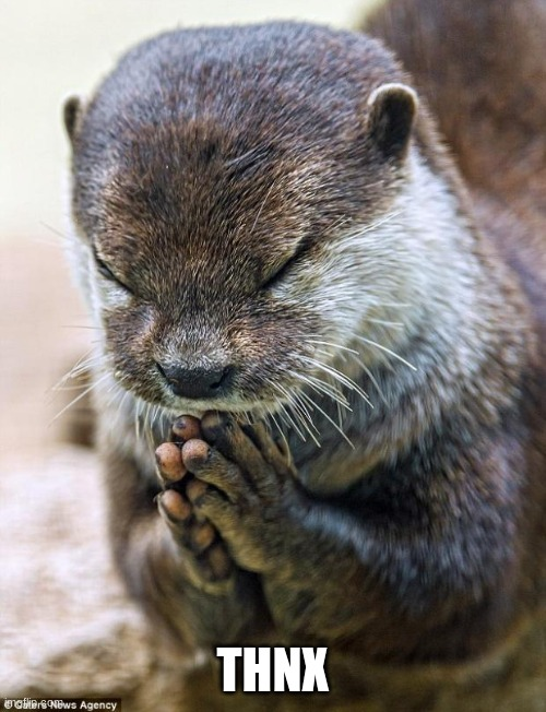 Thank you Lord Otter | THNX | image tagged in thank you lord otter | made w/ Imgflip meme maker