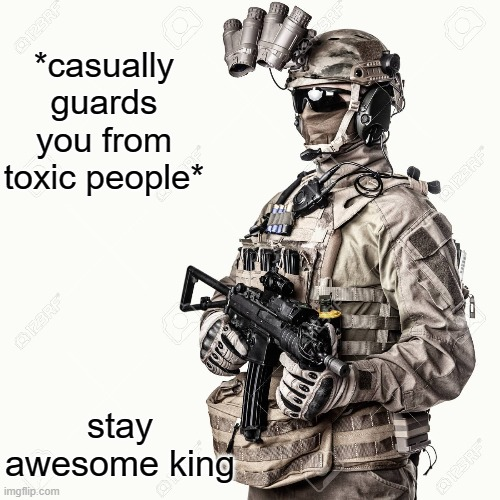 I will always protect you from toxic people |  *casually guards you from toxic people*; stay awesome king | image tagged in wholesome,soldier,toxic | made w/ Imgflip meme maker