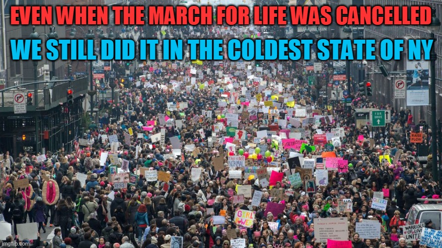 Nothing will stop the March for Life |  WE STILL DID IT IN THE COLDEST STATE OF NY; EVEN WHEN THE MARCH FOR LIFE WAS CANCELLED | image tagged in women's march,march for our lives,abortion,abortion is murder | made w/ Imgflip meme maker