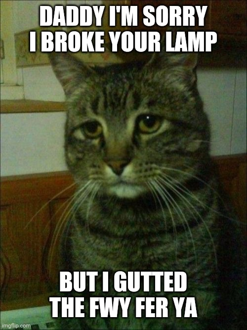 Depressed Cat |  DADDY I'M SORRY I BROKE YOUR LAMP; BUT I GUTTED THE FWY FER YA | image tagged in memes,depressed cat | made w/ Imgflip meme maker