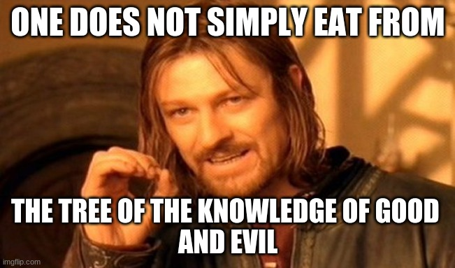 Hope y'all enjoy! |  ONE DOES NOT SIMPLY EAT FROM; THE TREE OF THE KNOWLEDGE OF GOOD  AND EVIL | image tagged in memes,one does not simply | made w/ Imgflip meme maker