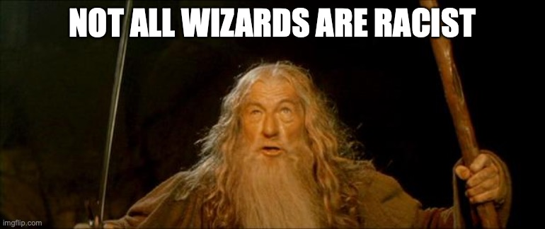 gandalf you shall not pass |  NOT ALL WIZARDS ARE RACIST | image tagged in gandalf you shall not pass | made w/ Imgflip meme maker