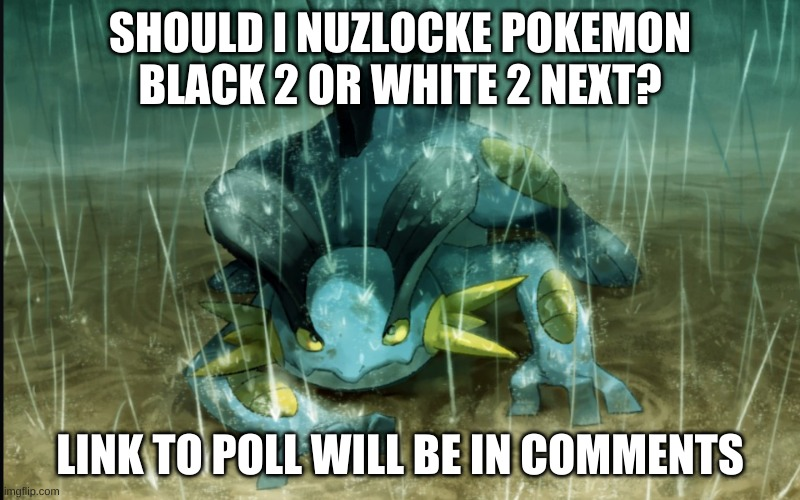 https://strawpoll.com/ahbhrp2g2 |  SHOULD I NUZLOCKE POKEMON BLACK 2 OR WHITE 2 NEXT? LINK TO POLL WILL BE IN COMMENTS | image tagged in the best swampert 999 | made w/ Imgflip meme maker