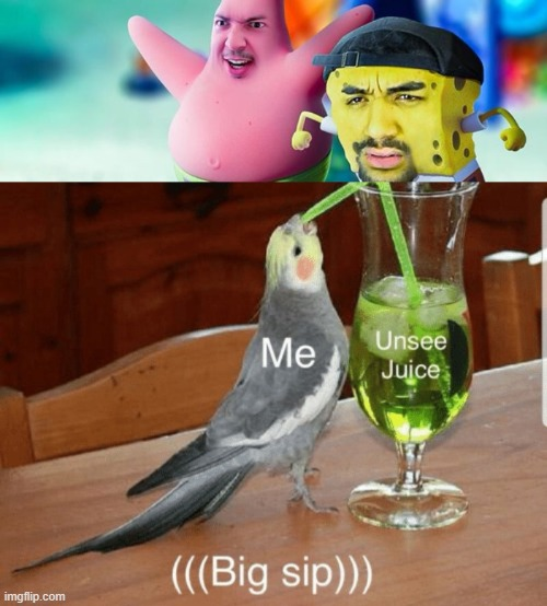 I am in desprate need of bleech and unsee juice | image tagged in unsee juice | made w/ Imgflip meme maker