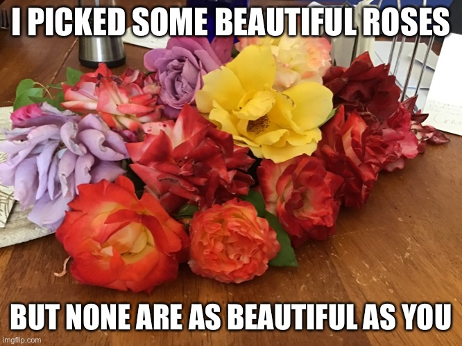 I PICKED SOME BEAUTIFUL ROSES; BUT NONE ARE AS BEAUTIFUL AS YOU | made w/ Imgflip meme maker