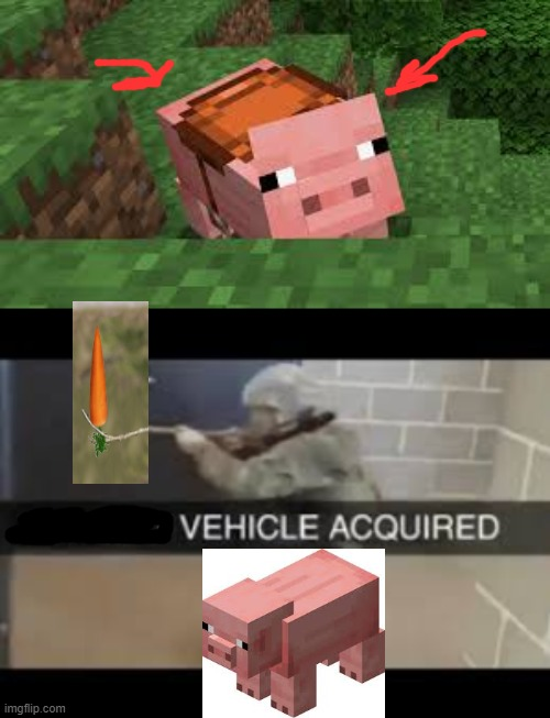 Me in Minecraft: | image tagged in minecraft,pig,minecraft pig,memes | made w/ Imgflip meme maker